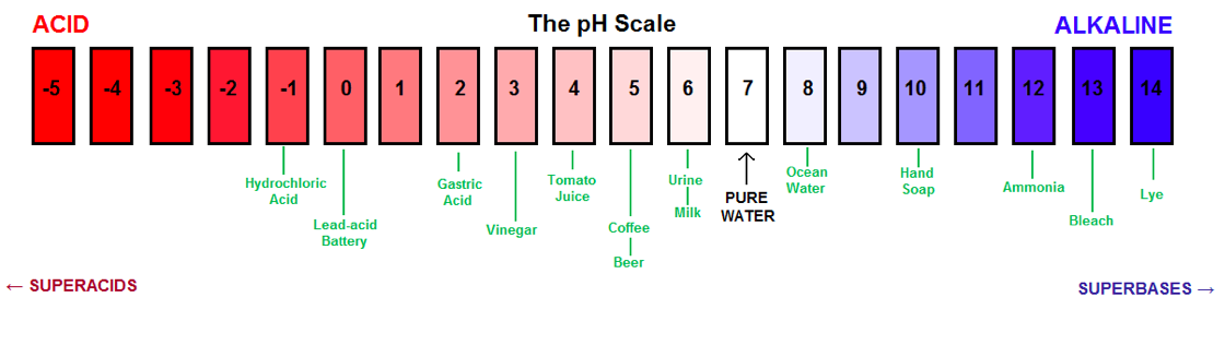 a study of the effects of ph on earthworms It is important to study the effect of ph on enzyme activity so it can be learned when amylase will function with maximum efficiency the results of this study are shown in table 1 below some black chunks of precipitate were noticed floating in the iodine solution in each of the compartments that had.